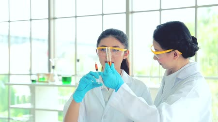 csőrendszer : Asian science two woman student of chemistry working in laboratory