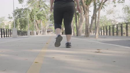 nadváha : Fat Asian women walking exercise in the park