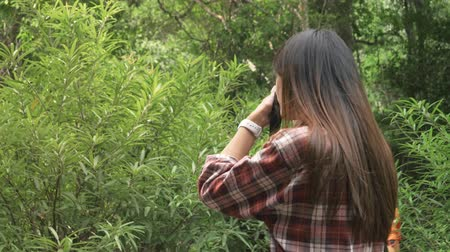 parkland : Asian Woman standing taking photos, Travel forest concept