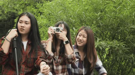parkland : Woman and friend trip sitting taking photos, Travel forest concept Stock Footage