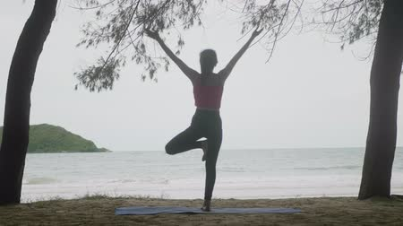 meditando : Asian woman practicing yoga in forest on beach,Healthy active lifestyle concept Vídeos
