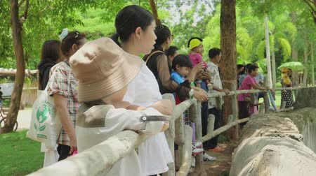 wiewiórka : NAKHONRATCHASIMA, THAILAND - JUNE 2, 2019:Asian family travel looking animal in zoo Wideo