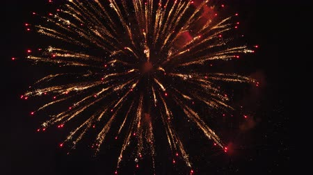 firecracker : Real fireworks black background on sky, Used for anniversary work in various festivals Stock Footage