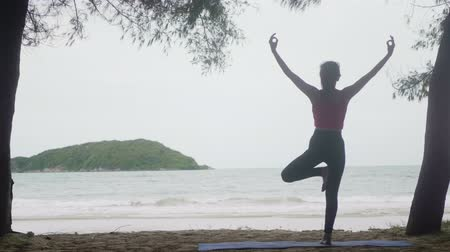 tartmak : Asian woman practicing yoga in forest on beach,Healthy active lifestyle concept Stok Video