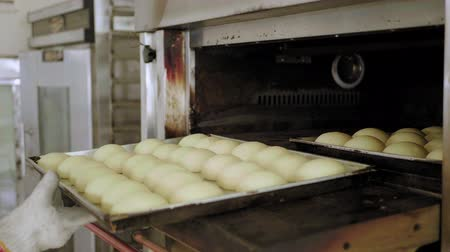 vdolky : Bakery bread factory, close-up hand woman who is using the oven bake produce a lot of bread,SME Small business