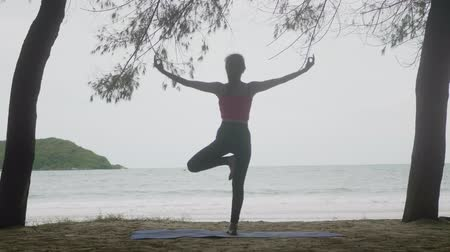 Asian woman looking sea exercise practicing yoga on beach meditation flexible balance,Tree Pose  Vrksasana, Healthy active lifestyle concept Stok Video
