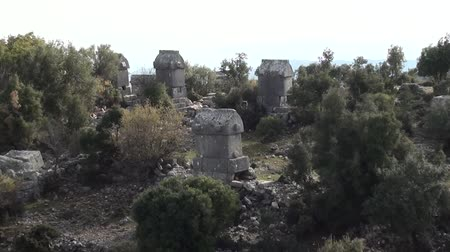 Tombs between trees