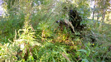 sniper scope : sniper with a gun camouflaged in the grass in forest searching victim