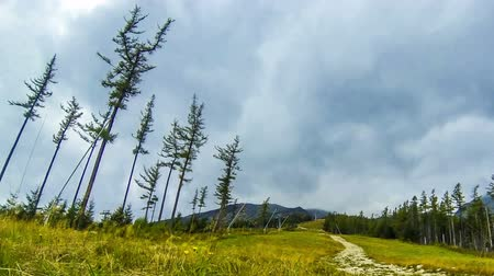 Ski track in summer. Tatranska Lomnica ski resort in High Tatras Mountains (Vysoke Tatry), Slovakia. Time Lapse. FullHD video