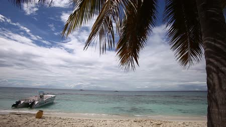 brisa : Beautiful exotic beach with palm and ship