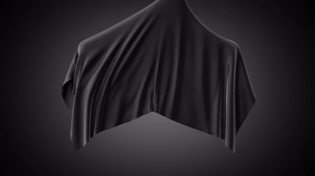 unveil : 3d animation, black fabric flying up, silky textile cover, cloth disappearing, unveil background, streaming silk, alpha channel Stock Footage