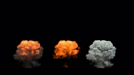 bomba : mushroom smoke cloud after explosion. alpha channel