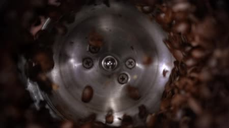 fabricado cerveja : Coffee beans grind in a coffee grinder, barista prepare ingredients for work in slow motion