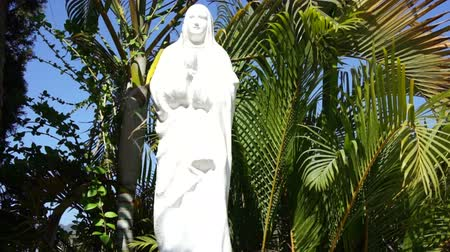 the conception : Mother Mary sourounded by moving palm tree leaves