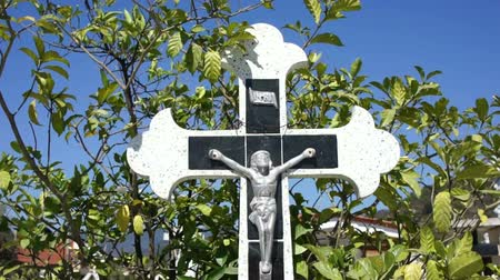 duch Święty : Crucifix sourounded by moving leaves