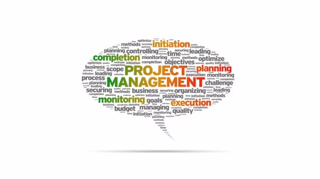 проект : Project Management