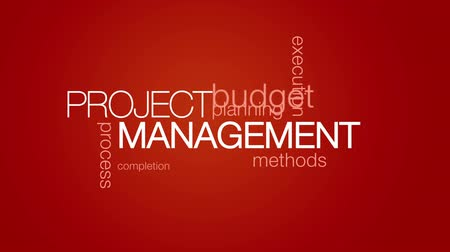 projekt : Project Management