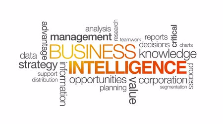intelligencia : Business Intelligence