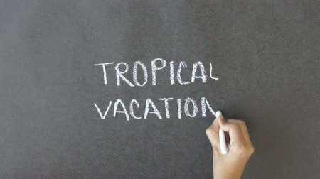 vacation destination : Tropical Vacation