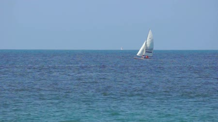 yelkencilik : Sailing Stok Video