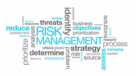 lucros : Risk Management word Cloud on white background