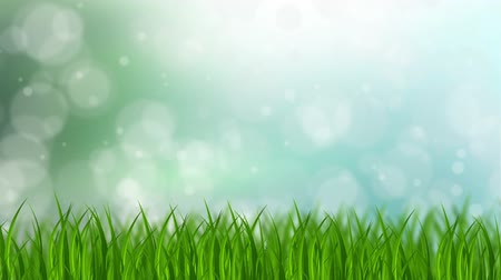 napfény : Animated grass background with bokeh dots