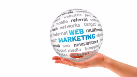 seo : A person holding a 3D web marketing Sphere Stock Footage