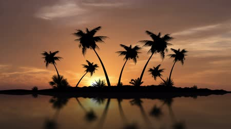 An Island of Palm Trees With Sunset Timelapse in the background