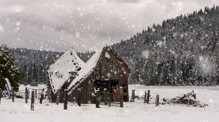 Winter landscape with an old wooden shack, snow covered trees and hills.