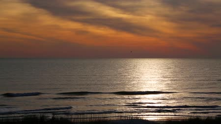 seamless looping : Looping. The sky over the ocean glows with warm early morning color as the sun is reflected on the sea with breaking waves on a sandy beach on Florida Stock Footage