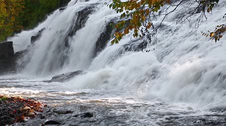 upper peninsula : Bond Falls, n Michigan Stock Footage