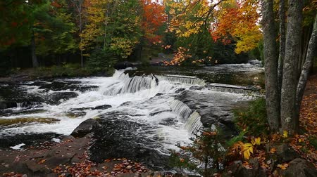 upper peninsula : Bond falls is a spectacularly beautiful cascading waterfall in Michigans western Upper Peninsula. It is featured in this loop with beautiful, vibrant fall foliage. Stock Footage