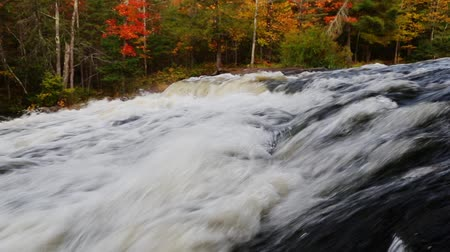 upper peninsula : Loop features whitewater cascading over rocks with tress sporting colorful fall foliage on the far bank. Stock Footage