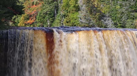 upper peninsula : Tahquamenon falls, a tannin-stained waterfall in Michigan