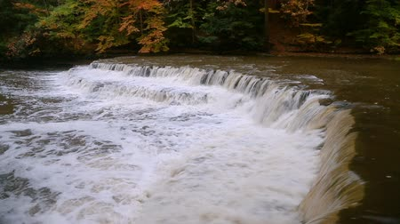 chagrin : Seamless loop features whitewater splashing over a wide and curving waterfall in Cleveland, Ohio Metro Parks South Chagrin Reservation in autumn.