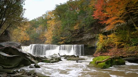 pedregulho : Looping video features Tinkers Creek plunging over Great Falls in Viaduct Park, Bedford, Ohio in the midst of an autumn landscape..