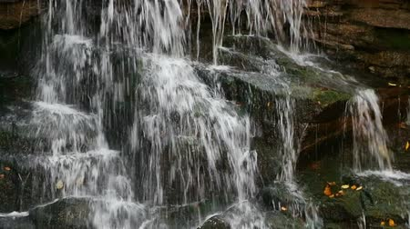 plunging : A waterfall, filmed close and tight splashes, cascades, pours, and plunges over a rocky cliff at McCormicks Creek State Park in Owen County, Indiana. Looping video.