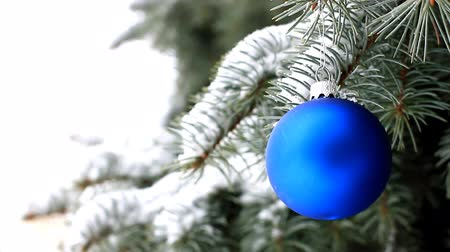 Blue Christmas ball hanging on branch of spruce