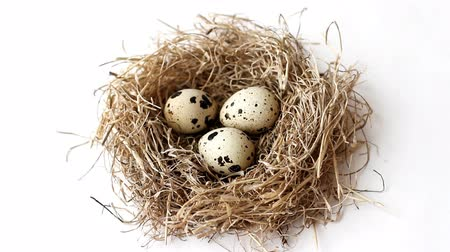 Nest from straw with quail eggs for Easter