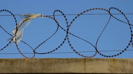 Concrete fence with barbed wire close up
