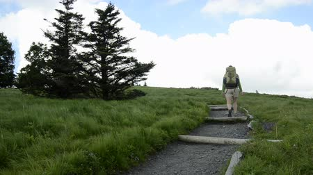bald mountain : A female hiker wearing a pack hikes up a rocky trail and turns left to pass behind two evergreen trees.