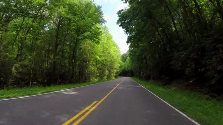 motorkerékpár : While driving along an empty road in the Smoky Mountain National Park, a motorcycle passes on the left Stock mozgókép