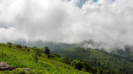 bald mountain : A time lapse of clouds passing over the Blue Ridge Parkway and the Art Loeb Trail in western North Carolina.