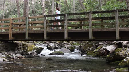 füstös : Woman Crosses Bridge over Rushing Creek in Smokies Stock mozgókép