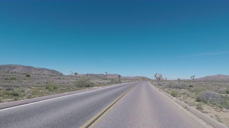 macadam : Straightaway through Joshua Tree on a sunny day