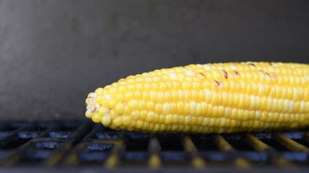 kukuřice : Corn Single on Grill Slide from left to right