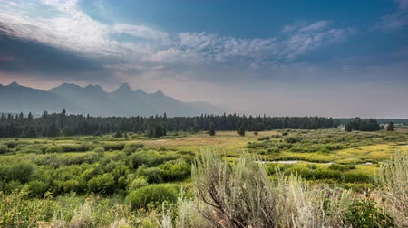 grand tetons : TL Grand Teton Blacktail Pond Overlook during summer in the Tetons Stock Footage