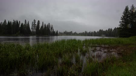 montana : TL Beartooth Highway - Pond In Rain along scenic highway in Wyoming