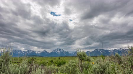 söğüt : TL Grand Teton - Rain Clouds Over Willow Flats in front of Teton Range