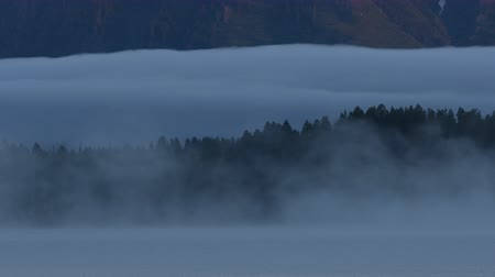 копытный : Fog Moving Over Jackson Lake at Dawn